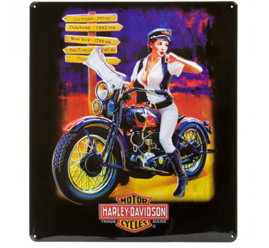 "Placa - ""Harley Davidson Crossroads Babe"" Ande Rooney"